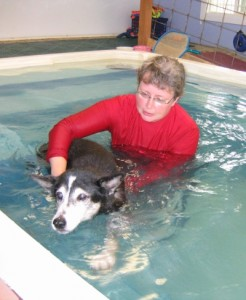Benzi swimming with Judi
